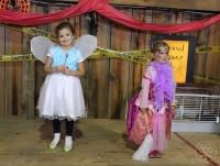 Princess meets Fairy