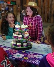 cupcake-cake