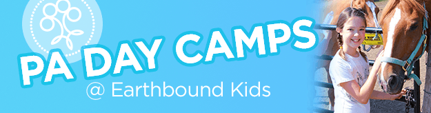 PA Day Camp banner