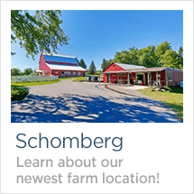 Earthbound Farm & Country House