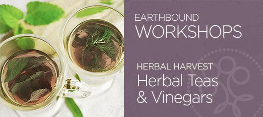 Herbal Workshops Oil & Vinegar